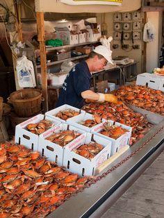 crabs, Maine Avenue Fish Market, Washington, D.C.