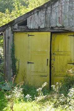 Sometimes it just the simple things like citron doors on an old barn :)