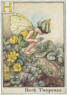 Cicely Mary Barker - Flower Fairies of the Alphabet