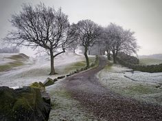 The Antonine Wall is the largest relic of the Roman occupation of Scotland.    Built around AD142, on the orders of the Emperor Antoninus Pius, it marked the northern border to the Roman Empire and was constructed as a defence against the northern tribes.