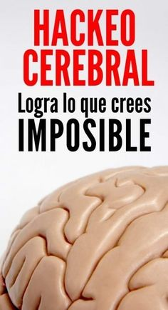 Hackeo Cerebral: Logra lo que crees imposible. How would it be to be able to hack our mind? The poss Brain Trainer, Brain Tricks, Brain Gym, Good Habits, Lectures, Emotional Intelligence, Life Motivation, Life Advice, Study Tips