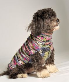 Purple Woodstock | Chilly Dog SweatersChilly Dog Sweaters