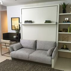 Wall Bed With Couch