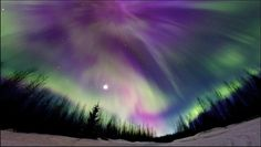 I would love to have the chance to visit Alaska to see the Aurora Borealis there. It looks so beautiful! Aurora Borealis, Borealis Lights, Visit Alaska, See The Northern Lights, Print Pictures, Amazing Nature, Finland, Beautiful Places, Beautiful Sky