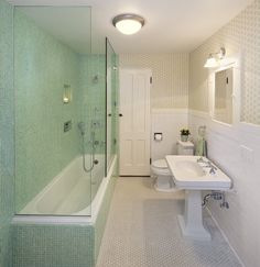 Tub Shower Combo Design, Pictures, Remodel, Decor and Ideas - page 5