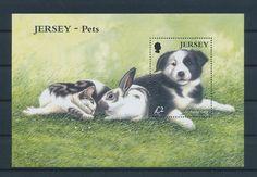 LE96257 Jersey  cat dog rabbit pet farm animals good sheet MNH