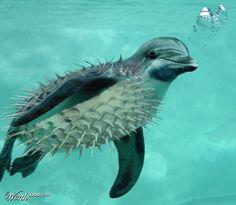 Aquatica - Worth1000 Contests