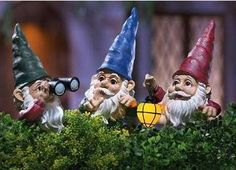 3 Peeping Gnomes Lighted Garden Statues