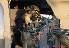 ❤ On Duty!..❤