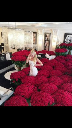 Find images and videos about flowers, red and luxury on We Heart It - the app to get lost in what you love. Beautiful Roses, Beautiful Flowers, Beautiful Things, Tumbrl Girls, Executive Fashion, Executive Style, Luxury Lifestyle Women, Lifestyle Blog, Foto Casual