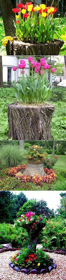 Container Gardening, Backyard Projects, Flower Garden, Container Plants, Planters, Outdoor, Plants, Plant Design, Backyard