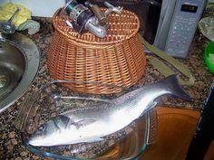 Asturias Salada, Albumes de Fotografia de pesca en Asturias
