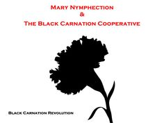 CARNATION BLACK 4