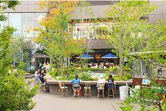 ■おもはらの森■ 東京都渋谷区神宮前4-30-3 営業時間 8:30~21:00 TEL: 03-6804-6671 HP: http://omohara.tokyu-plaza.com/