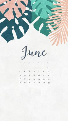 June 2018 iPhone Calendar