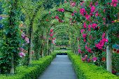 View this The Rose Garden Butchart Gardens Brentwood Bay Vancouver Island British Columbia Canada stock photo. Find premium, high-resolution images in Getty Images' library. Wooden Garden Gate, Garden Gates, Rose Pictures, Formal Gardens, Flowering Trees, Vancouver Island, Organic Gardening, Beautiful Flowers, Landscape