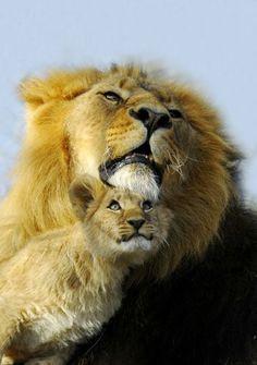 """Father and Child"""" by Amazing World beautiful amazing"""