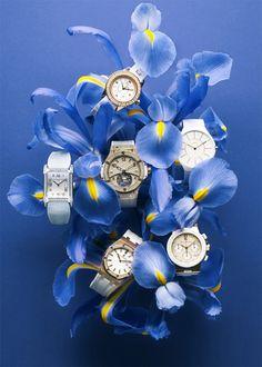 Watches with irises / Charles Negre.