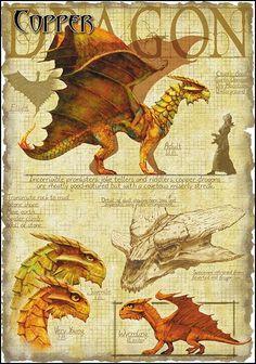 Dragon cobre