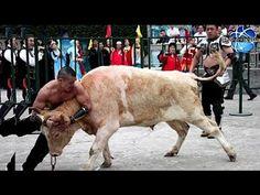 Bullfight Challenge