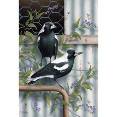 Australian Animals, Australian Art, Bird Illustration, Magpie, Creepers, Beautiful Birds, Japanese Art, Landscape Paintings, Purple