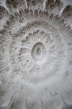 Incredibly Intricate Science-Inspired Paper-Cuttings Of Corals, Bacteria, Cells - DesignTAXI.com