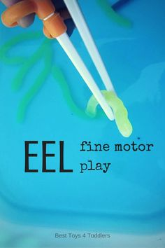 Best Toys 4 Toddlers - EEL Fine Motor Play - catching worms is always a fun activity to keep kids busy! Letter E Activities, Fun Activities For Preschoolers, Fine Motor Activities For Kids, Motor Skills Activities, Fun Activities To Do, Fine Motor Skills, Learning Activities, Preschool Activities, Play Activity