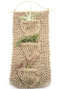 Take your air plant displays to a whole new level! If you love creating terrariums, you'll love these wall hangings. $40
