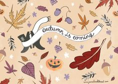 Autumn is coming.