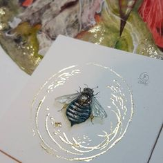 Shadowscapes - Stephanie Pui-Mun Law — Another little blue banded #bee  Last one from the...