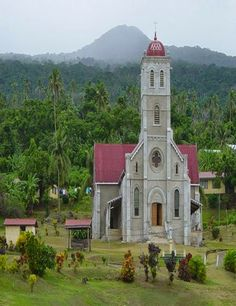 Taveuni Island , Fiji - The Taveuni island is one of the major islands that form the island nation of Fiji. It ranks the third position regarding its area among the other two major islands of Fiji, viz. the Vanua Levu and the Viti Levu. - Travel Pedia