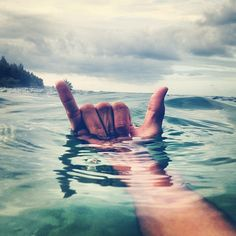 Surfs upp