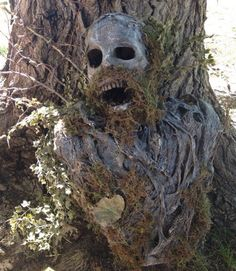 Amazing Mummified Tree Spirit Halloween Decoration created and for sale by Reliquary Impressions at MoreThanHorror.com