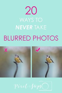 Is photo blur getting you down? 20 photography tips to avoid blurred photos ever again!