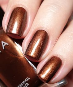 Zoya Cinnamon -  Flair Collection swatches - Fall 2015   |  Sassy Shelly