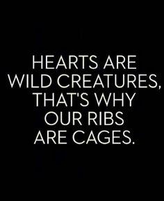 Rib cage <3