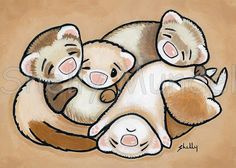 Items similar to Ferret Art ACEO print - Cuddle Puddle 1 - Shelly Mundel Art on Etsy Imagenes Free, Huge Cat, Cute Ferrets, Cat Art Print, Gifts For My Sister, Cute Drawings, Cuddling, Canvas Wall Art, Cat Lovers
