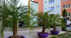 Hotel Guter Hirte - 3 Sterne #Hotel - EUR 46 - #Hotels #Österreich #Salzburg #Itzling http://www.justigo.com.de/hotels/austria/salzburg/itzling/guter-hirte_37420.html