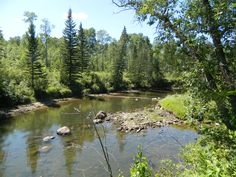 Whitemouth River in Sandilands Provincial Park, Manitoba