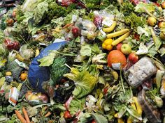 France named Europe's top country for food sustainability thanks to war on waste | The Independent