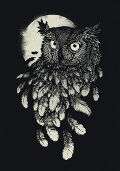 owl illustration - Pesquisa Google