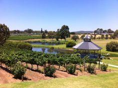 Read all about wine tasting at Sittella in the Swan Valley Perth Australia Trip, Perth Western Australia, Sparkling Grape Juice, Train Journey, Eurotrip, During The Summer, Wine Tasting, Swan, Scenery