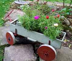 Three Dogs in a Garden: Pin Ideas:Container Plantings