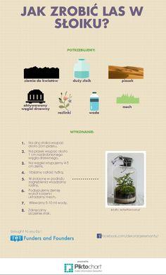 Jak zrobić las w słoiku? | El-Maro