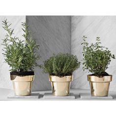 Skultuna Flower Pots | Herb/flower pots | Kitchenware | Finnish Design Shop