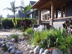 Of all that I have seen I like this one best,I might try this ...natural landscaping dry creek bed