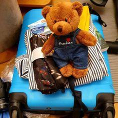 """Gefällt 33 Mal, 11 Kommentare - Sissi - Blog Travelcontinent (@blogtravelcontinent) auf Instagram: """"Es geht endlich wieder auf Reisen!🌞 Ich bin schon beim Kofferpacken und der kleine Freund will…"""""""