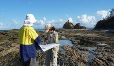 Rock into the exciting study world of tectonics Geology, Australia, Rock, World, Skirt, Locks, The Rock, Rock Music, Batu
