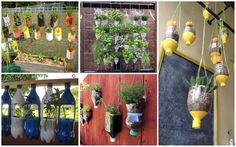 """""""Do it yourself"""" projects for recycling are always entertaining and environmentally friendly way to reduce the amount of plastic packaging that every day Plastic Bottle Planter, Plastic Bottle Art, Reuse Plastic Bottles, Plants In Bottles, Architecture Art Design, Do It Yourself Projects, Hacks Diy, Diy On A Budget, Garden Pots"""