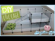 DIY C&C guinea pig cage │Alexandriasanimals - YouTube